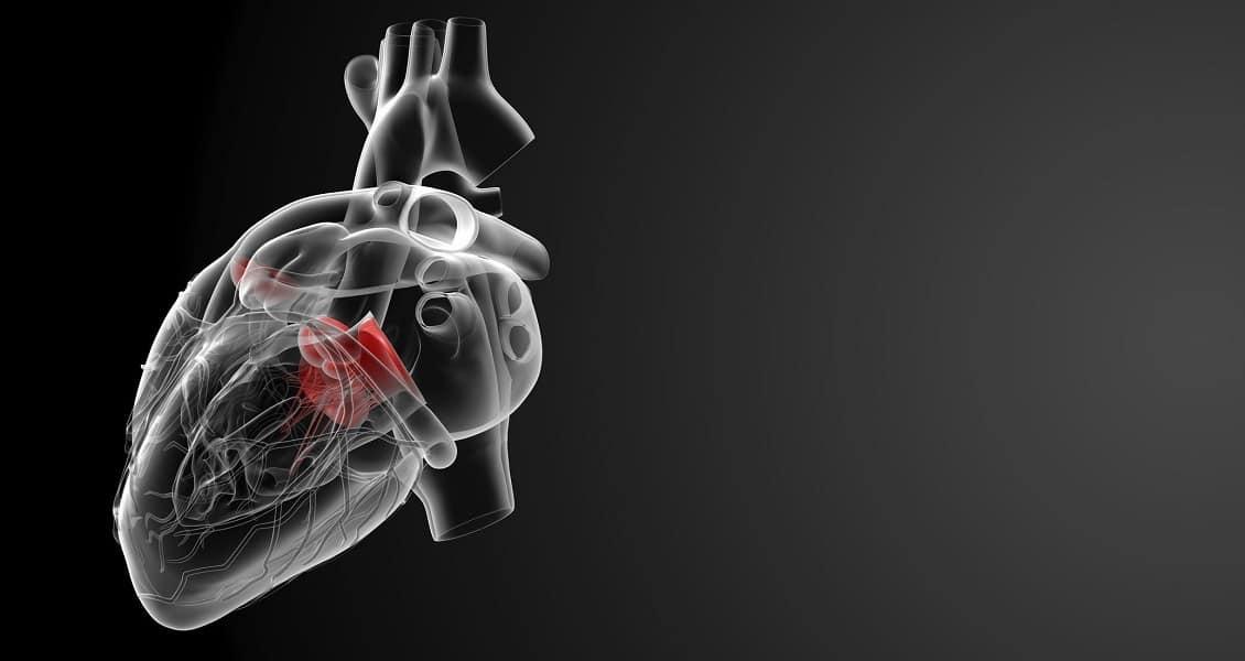 فلوشیپ اقدامات مداخلهای قلب و عروق بزرگسالان