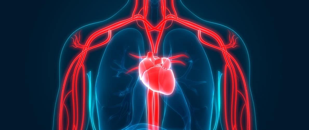 فوق تخصص جراحی قلب و عروق