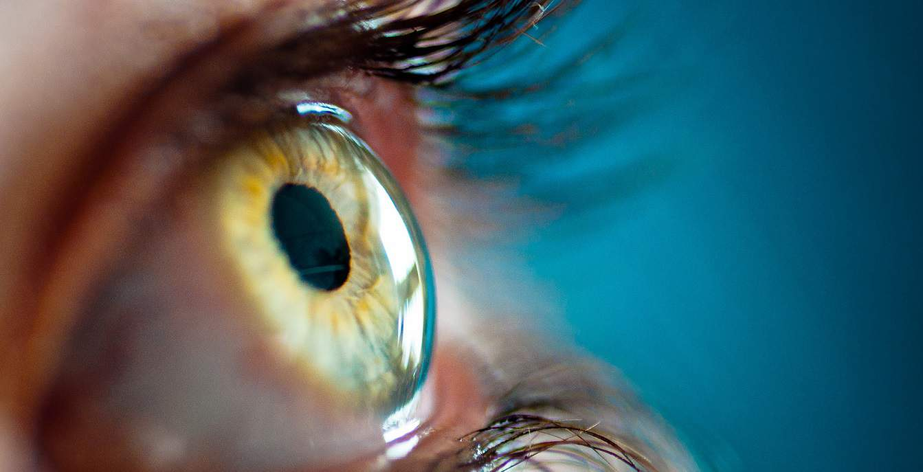 فلوشیپ قرنیه و خارج چشمی